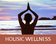 holistic-wellness-sidebar