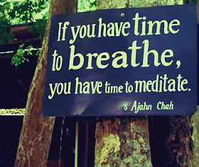 if-you-can-find-the-time-to-breathe-you-can-find-the-time-to-meditate