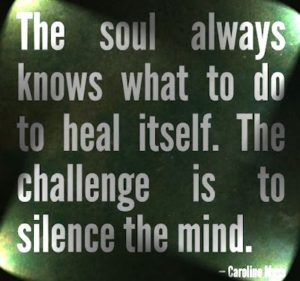 the-soul-always-knows-what-to-do-to-heal
